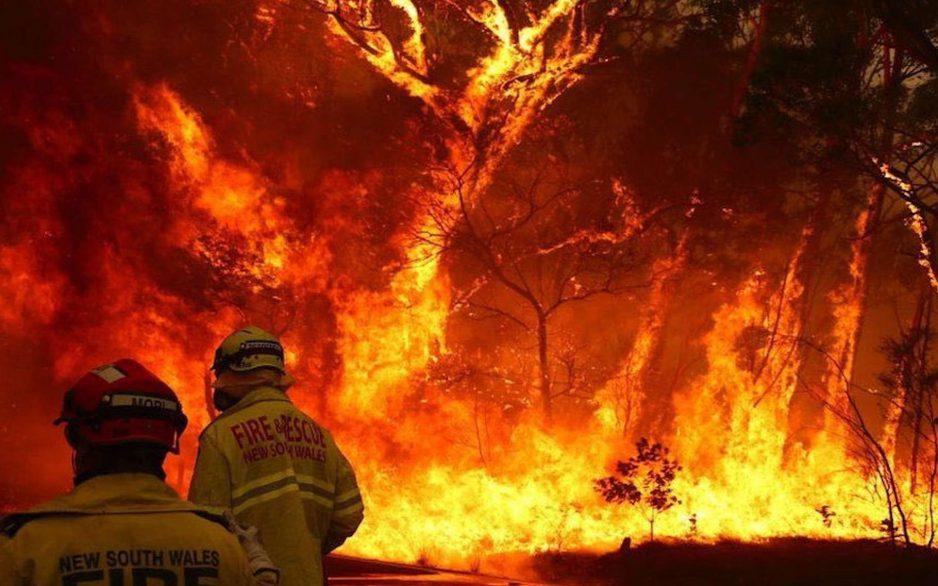 Un gigantesque feu engloutit 600 000 hectares en Australie